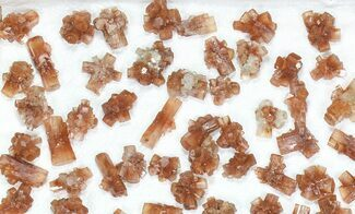 Buy Wholesale Lot: Small Twinned Aragonite Crystals - 125 Pieces - #77161