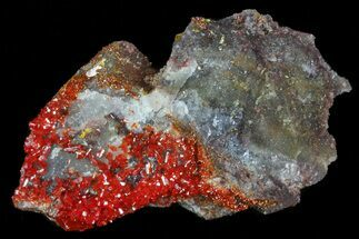 ".78"" Mimetite Crystal Cluster - Rowley Mine, AZ For Sale, #76904"