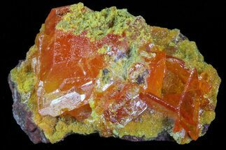 "Buy .79"" Wulfenite Crystal Cluster - Rowley Mine, AZ - #76909"