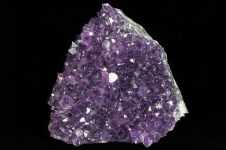 "Buy 4.3"" Dark Purple Amethyst Cluster - Uruguay - #77002"