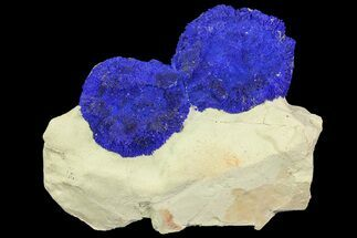 Brilliant Blue Azurite Sun Cluster On Rock - Australia For Sale, #77627