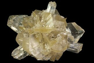 Gypsum var. Selenite - Fossils For Sale - #77607