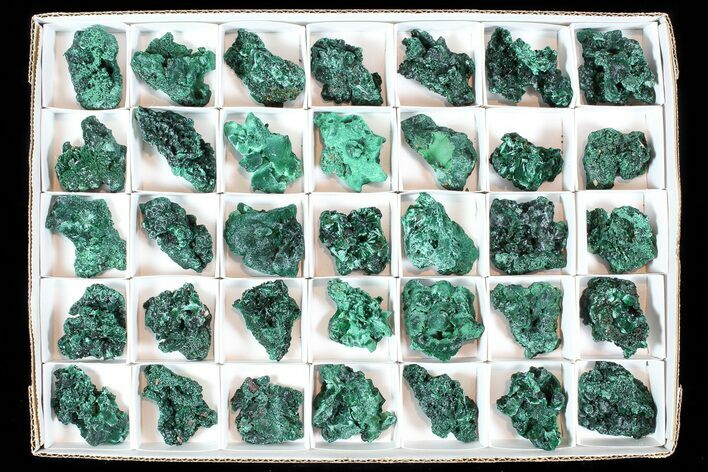 Wholesale Lot: Gorgeous Fibrous Malachite From Congo - 35 Pieces