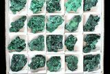 Wholesale Lot: Gorgeous Fibrous Malachite From Congo - 35 Pieces - #77806-2