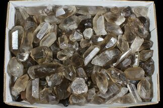 "Buy Wholesale Lot: 25 Lbs Smoky Quartz Crystals (2-4"") - Brazil - #77821"