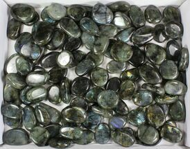 Labradorite - Fossils For Sale - #77718