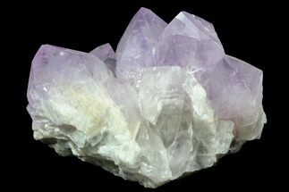 Quartz var. Amethyst - Fossils For Sale - #78153