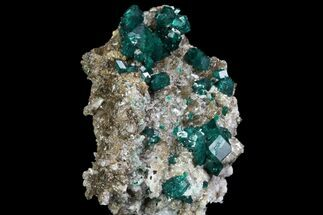 "2.3"" Large, Gemmy Dioptase Crystals On Calcite - Kazakhstan For Sale, #78851"