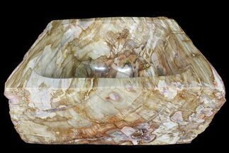"14.5"" Wide Polished Petrified Wood Bowl - 57 lbs For Sale, #79205"
