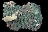 "2.4"" Purple/Green, Druzy, Botryoidal Grape Agate - Indonesia - #79665-1"