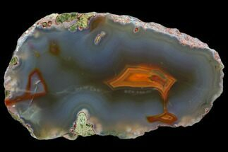 "4.9"" Beautiful Condor Agate From Argentina - Slab For Sale, #79481"