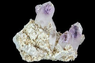 Quartz var. Amethyst - Fossils For Sale - #80559