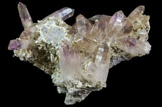 Quartz var. Amethyst - Fossils For Sale - #80616