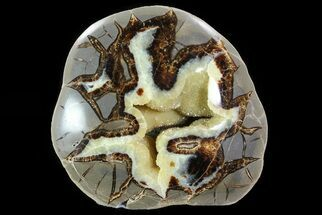 "5"" Beautiful, Crystal Filled Septarian Nodule - Utah For Sale, #80903"