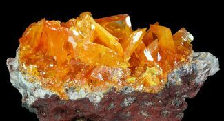 Wulfenite - Fossils For Sale - #76833