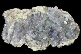Fluorite - Fossils For Sale - #81195