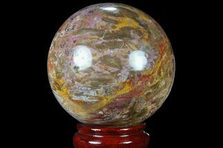 "5"" Colorful Petrified Wood Sphere - Madagascar For Sale, #81542"