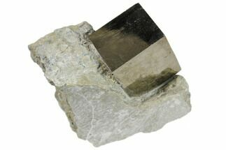 "Buy .7"" Natural Pyrite Cube In Rock From Spain - #82042"