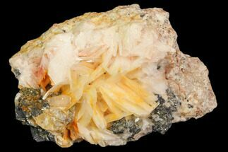 Barite & Galena - Fossils For Sale - #82356