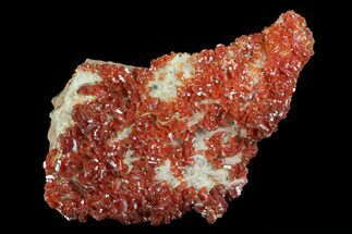 "Buy 2.5"" Ruby Red Vanadinite Crystals On Dolomite - Morocco - #82369"