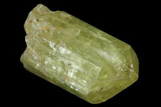 ".8"" Lustrous Yellow Apatite Crystal - Morocco For Sale, #82505"