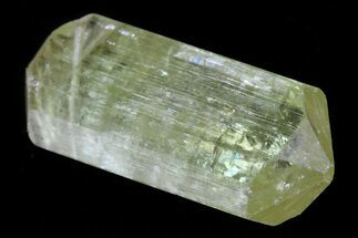 ".7"" Lustrous Yellow Apatite Crystal - Morocco For Sale, #82514"