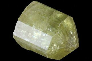 ".7"" Lustrous Yellow Apatite Crystal - Morocco For Sale, #82562"