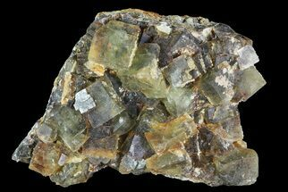 Fluorite - Fossils For Sale - #82806