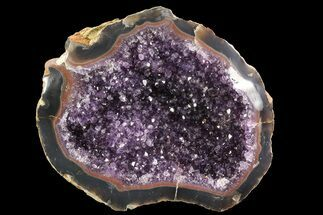 "Buy 10.1"" Purple Amethyst Geode - Uruguay - #83737"
