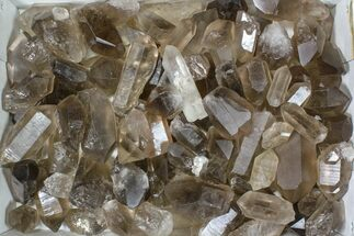 "Wholesale Lot: 22 Lbs Smoky Quartz Crystals (2-4"") - Brazil For Sale, #84233"