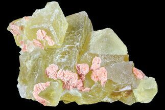 "1.8"" Lustrous Yellow Cubic Fluorite/Barite Crystal Cluster - Morocco For Sale, #84293"