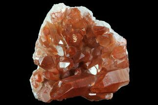 "Buy 2.1"" Natural Red Quartz Crystal Cluster - Morocco - #84349"