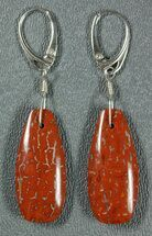 Red, Agatized Dinosaur Bone (Gembone) Earrings  For Sale, #84747