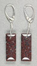 Dark, Spiderweb, Agatized Dinosaur Bone (Gembone) Earrings  For Sale, #84760