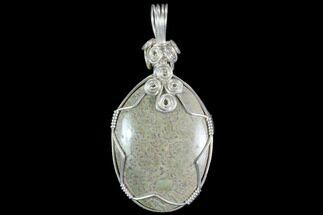 Silver Wire Wrapped Dinosaur Bone Pendant - Colorado For Sale, #86107