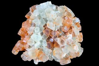 Aragonite - Fossils For Sale - #87774