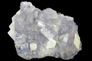 Fluorite & Calcite - Fossils For Sale - #89964
