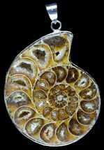 Fossil Ammonite Pendant - 110 Million Years Old For Sale, #89870