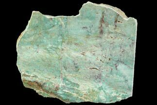 "7"" Polished Fuchsite Chert (Dragon Stone) Slab - Australia For Sale, #89972"
