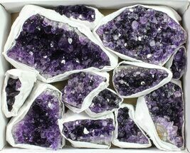 Quartz var. Amethyst - Fossils For Sale - #90132