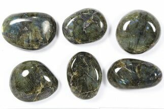 Labradorite - Fossils For Sale - #90381
