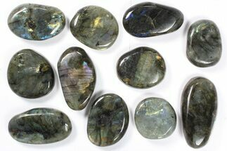 Labradorite - Fossils For Sale - #90468