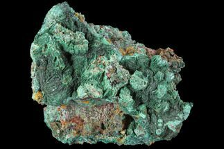 "2.4"" Malachite on Matrix - Morocco For Sale, #90710"