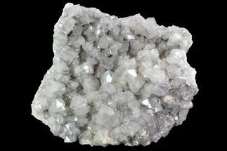 Calcite  - Fossils For Sale - #91071