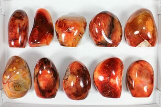 "Wholesale Lot: 3-4"" Cut Base Polished Carnelian - 10 pieces For Sale, #91472"