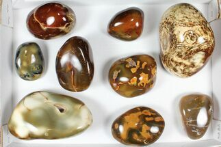 Wholesale Lot: 11 lbs Polished Carnelian Agate - 9 Pieces For Sale, #91853