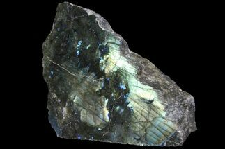 Labradorite - Fossils For Sale - #92019