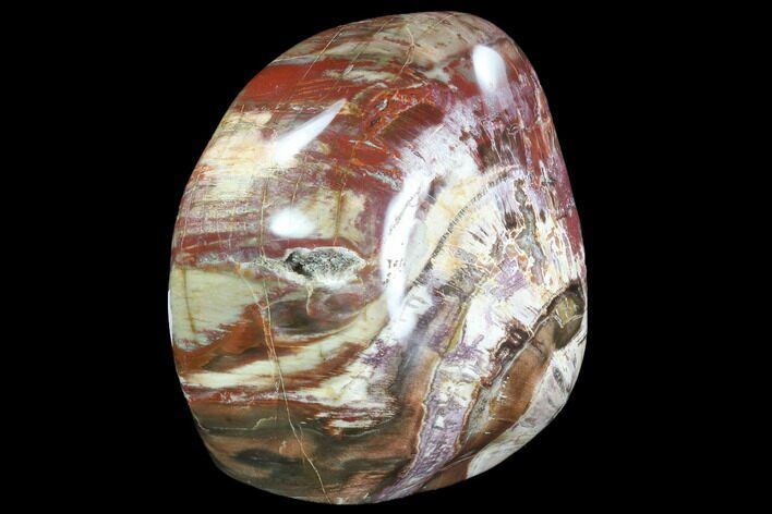 "5.5"" Tall, Free-Standing, Polished Petrified Wood - Madagascar"
