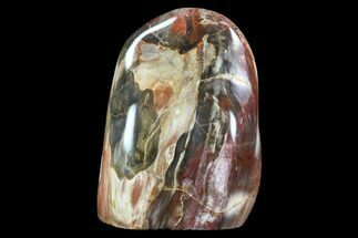 "Buy 6.9"" Tall, Polished Petrified Wood Freeform Sculpture - #92356"