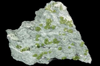 "3.2"" Demantoid Garnets In Serpentine Matrix - Kayes Region, Mali For Sale, #92504"